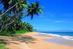 Google Afbeeldingen resultaat voor http://lankaluxury.com/wp-content/themes/kingsize/images/upload/srilankabeach.jpg