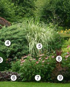 Building Better Borders | Fine Gardening