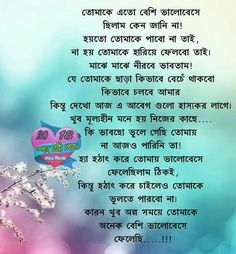 bangla quotes sad texts image collection sd card messi lakes
