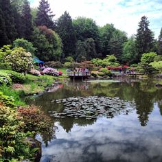 Japanese Gardens in Seattle, WA FUN FACT: This is the park I used to hang out in and draw and write poetry all the time. It is also the place I want to get married! It is such a lovely place and so peaceful! D:) Smiley!