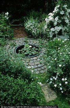 chasingthegreenfaerie — (via (11) Pin by Stephanie on Garden | Pinterest)