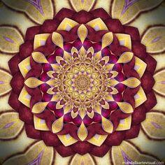 VIBRAÇÃO DE CURA Olá amigos! Esta é a continuação da coleção de mandalas que lembram flores, criadas a partir de fractais . P...