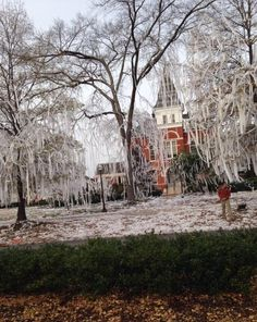 The morning after - Iron Bowl 2013