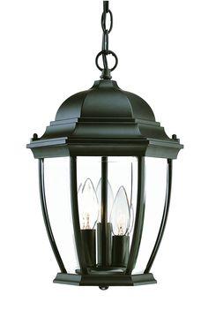 Wexford Hanging Lantern by Acclaim Lighting