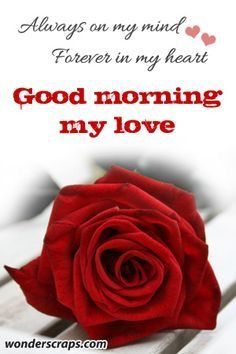 Good Morning Messages: If you like to share Good Morning with your family, relatives, lover & friends. Find out unique collections of Good Morning Msg, best good morning messages for friends in Hindi, morning love messages. Morning Love Quotes, Good Morning Inspirational Quotes, Morning Greetings Quotes, Good Morning Messages, Good Morning Good Night, Good Morning Wishes, Good Morning Images, Good Morning Handsome Quotes, Good Morning Love Text