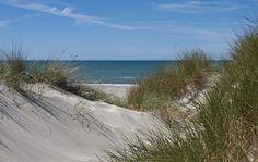 Dänemark Strand Dünen im Dänemark Reiseführer http://www.abenteurer.net/1404-daenemark-reisefuehrer/