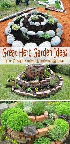 Great Herb Garden Ideas for People with Limited Space