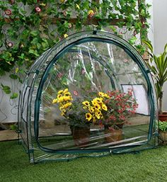 Zenport SH3050LGPVCA 3Feet Balcony Greenhouse for Protected Patio Balcony Plant Growing and Gardening 33 x 2 x 33Feet *** You can find out more details at the link of the image.