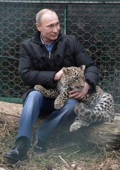 Putin nella gabbia con un leopardo, due giornalisti feriti | tuttacronaca http://tuttacronaca.wordpress.com/2014/02/04/putin-nella-gabbia-con-un-leopardo-due-giornalisti-feriti/