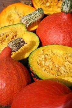 Kterou dýni musíte vařit a která se jí za syrova? Mango, Pumpkin, Vegetables, Cooking, Food, Hokkaido, Bulgur, Manga, Kitchen