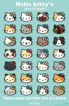 Images Hello Kitty, Hello Kitty Art, Hello Kitty Items, Sanrio Hello Kitty, Hello Kitty Cartoon, Hello Kitty Things, Hello Kitty Drawing, Hello Kitty Iphone Wallpaper, Sanrio Wallpaper