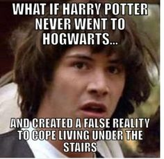 What if Harry Potter never went to Hogwarts... and created a false reality to cope with living under the stairs?  PLEASE NO!