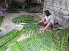 Nipa - palm leaf roof cladding
