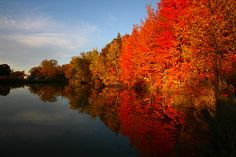 spend a fall in Vermont