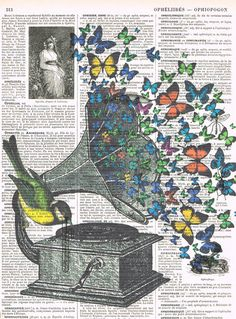 Butterflies.Bird.Music.Gramophone.Collage.Fantasy.Antique by studioflowerpower, $8.50