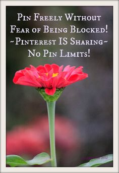 Pinterest IS for Sharing ~ Please pin freely without fear of being blocked!  Happy Pinning!  Jada <3