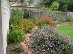 Dry creek bed with perennial color.