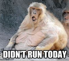 didn't run today...this is how I feel
