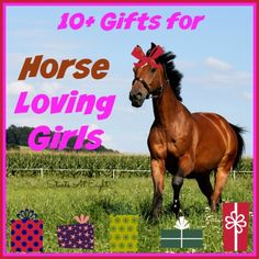 Looking for an awesome gift for your special horse lover? Here are 10 Gifts for Horse Loving Girls that are sure to put a smile on her face!