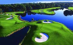 The Golf Courses of Palmetto Dunes on Hilton Head Island, South Carolina