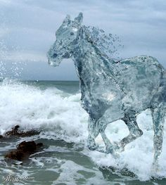 Photo of the sea with a horse created from water. Very life-like, the water horse looks so real if there were such thing.