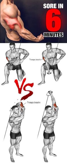 Health And Fitness, know healthy suggestions to revamp one's health? Kindly copy the pin idea number 6511101228 today. Fitness Workouts, Planet Fitness Workout, Body Fitness, Forearm Workout, Biceps Workout, Fitness Studio Training, Bodybuilding, Biceps And Triceps, Aerobics Workout