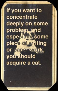 Muriel Sparks on how a cat can boost your creative productivity.