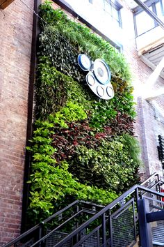 Greenstreet GreenWalls installation at Gunthers & Co. in Baltimore, Maryland.