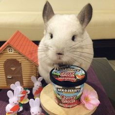 """There is NOTHING some ice cream can't fix."" 