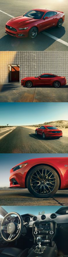2015 Ford Mustang GT >>> Saw one of these beauties out on the road today! So amazing. I need one!