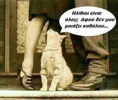 More Fun, Like Me, Jokes, Cats, Funny, Languages, Greek, Heels, Photos