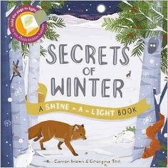 Secrets of Winter (Shine-A Light Books): Carron Brown, Georgina Tee: 9781782402770: Amazon.com: Books
