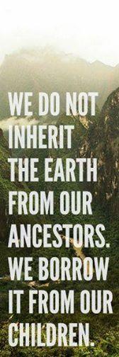 Via #RainforestSite