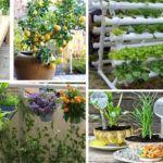 33 Truques Para Fazer Hortas em Vasos Para Pequenos Espaços de sua Casa Que Você Precisa Saber