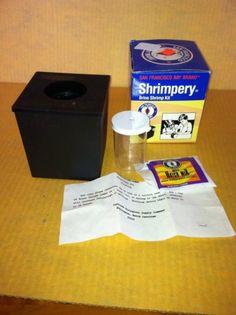 San Francisco Bay Brand Shrimpery Brine Shrimp Kit