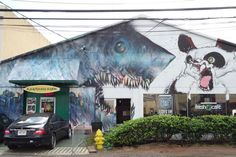 Shark Toof - The graffiti artist talks about diving with, painting and saving his beloved predator