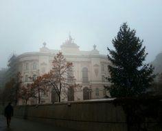 A foggy morning.
