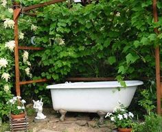 I would like this in my yard.  Good alt to a pool.