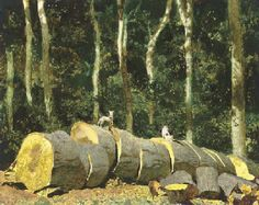 Jamie Wyeth (b.1946)  Dozer and Egg  signed 'J WYETH' (lower left)--inscribed with title and dated 'SUMMER 1985' (on the reverse) mixed medi...