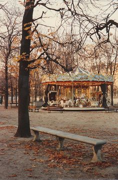 autumn leaves and carousels