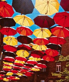 Painting inspired ny photograph taken in Quebec,canada by joan Reese,positive quote about umbrella by Marianne Williamson