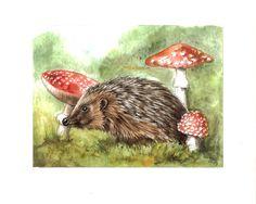 hedgehog by ~jennomat on deviantART