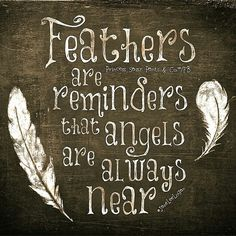 Feathers are reminders that Angels are always near