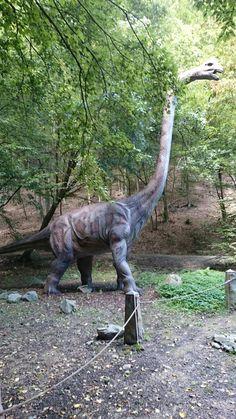 Animal Sculptures, Prehistoric, Garden Sculpture, Outdoor Decor, Dinosaurs, Animals, Home Decor, Animais, Homemade Home Decor