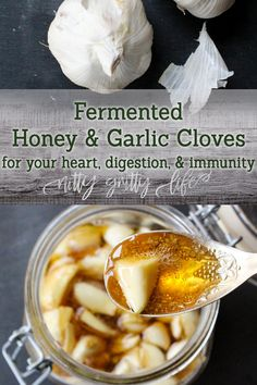 benefits of eating garlic cloves . benefits of eating whole garlic cloves . benefits of eating roasted garlic cloves . eating whole garlic cloves benefits Fermented Honey, Fermented Foods, Garlic Recipes, Healthy Recipes, Onion Recipes, Protein Recipes, Simple Recipes, Healthy Treats, Healthy Food