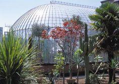 Le jardin des plantes à Nantes, un havre de paix au coeur de la ville !
