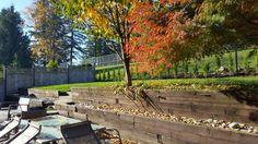 Fall Patio, Fall, Outdoor Decor, Home Decor, Autumn, Decoration Home, Fall Season, Room Decor, Home Interior Design