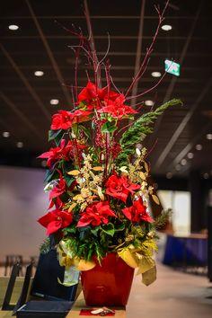 christmas decoration Christmas Decorations, Christmas Tree, Holiday Decor, Flower Arrangements, Flowers, Plants, Home Decor, Homemade Home Decor, Christmas Decor
