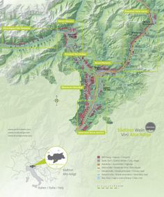 Good overview of Alto Adige Wine Region