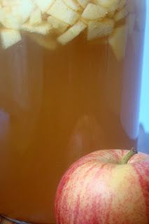 Two New Kombucha Flavors for Fall: Ginger Pear and Apple Cinnamon